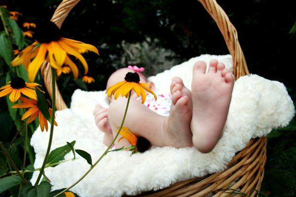 Baby in einem Korb & Sonnenblumen