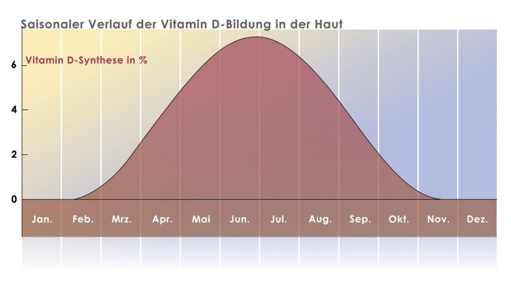 Saisonaler Verlauf der Vitamin D-Bildung in der Haut