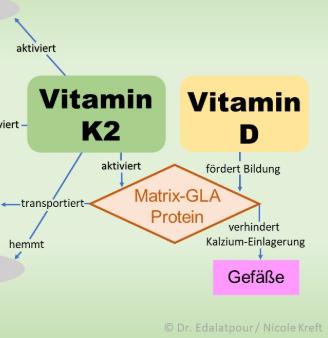 Vitamin D Co-Faktor Vitamin K2
