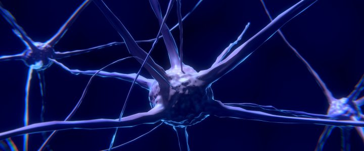 Vitamin D schützt vor Multiple Sklerose