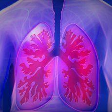 Vitamin D bei COPD